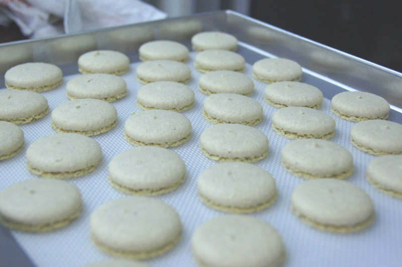 peanut butter macarons in singapore