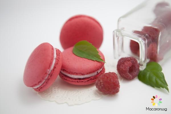 Canadian Raspberry Macarons