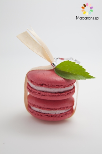 Canadian Raspberry Singapore Macarons