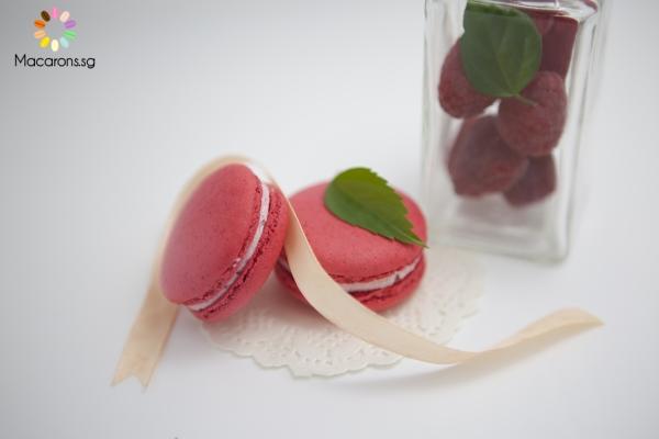 Canadian Raspberry Singapore Macarons