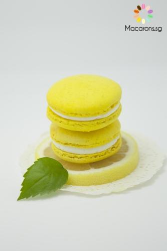 Lemon Zest Macarons In Singapore